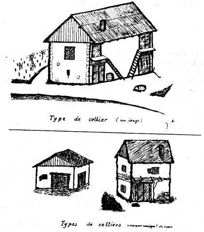 Dessin des différents types de celliers - (Guillaumin, 1937)