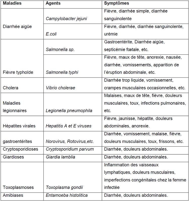 Composition microbiologique des DM, les maladies et les symptômes associés