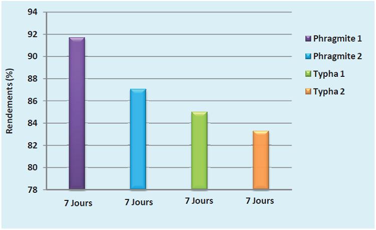 Effet de la densité sur les quatre filtres plantés sur le pouvoir épuratoire des plantes