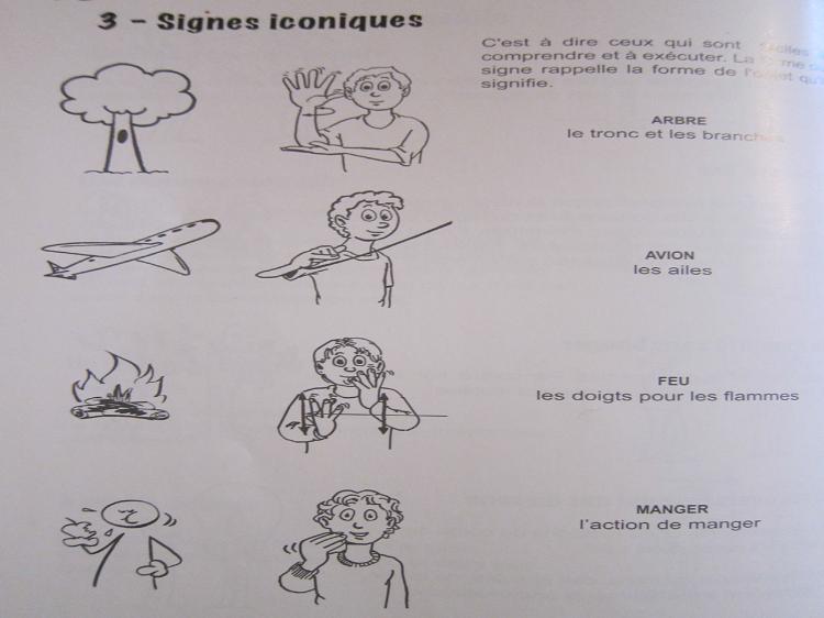 Signes icnoniques