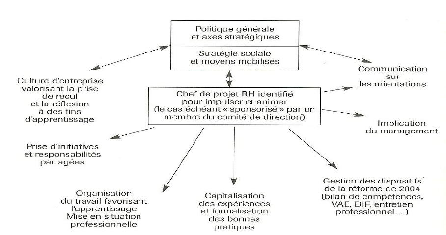 4 la dimension competences