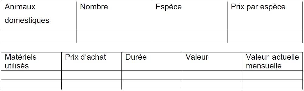 Annexe 4 Etude de la contribution des ressources naturelles aux budgets des ménages ruraux  Cas du village BANGA (République Centrafricaine) 3