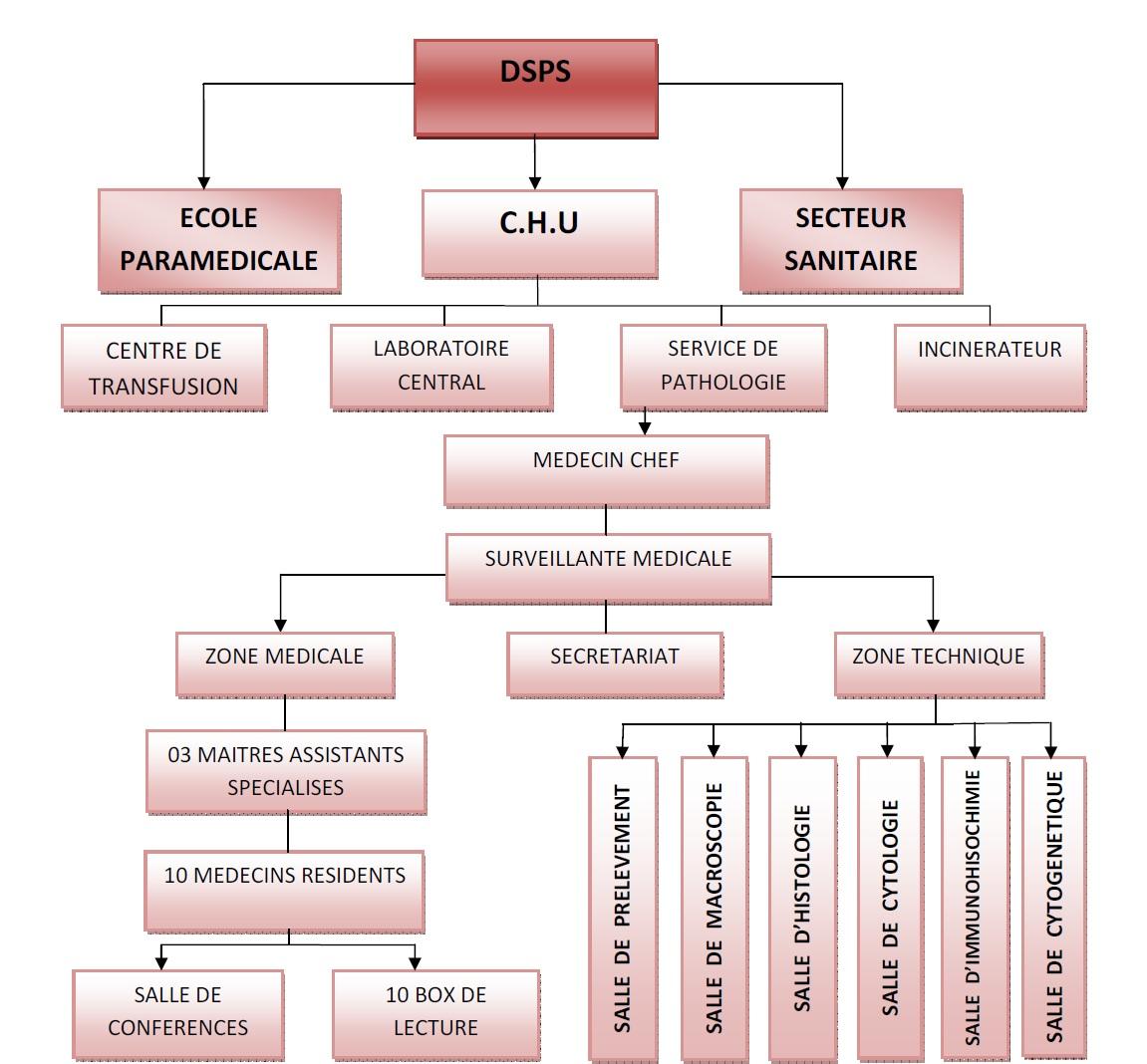 Figure 1 Analyses médicales aux services du CHU de SBA et à la polyclinique de SIDI Djillali