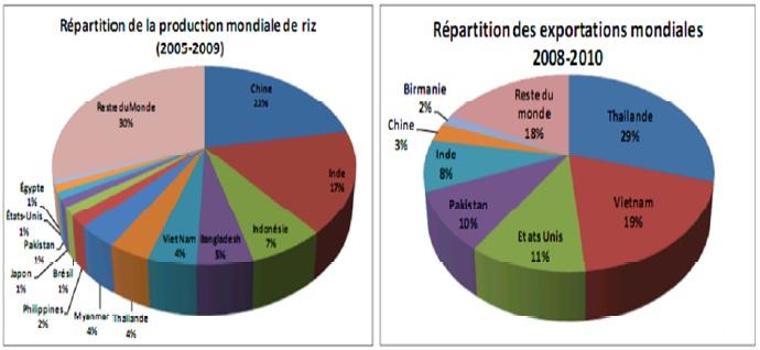 Figure 1 CARACTERISATION AGRO-MORPHOLOGIQUE DES ÉCOTYPES DE RIZ (Oryza spp.) DU BENIN