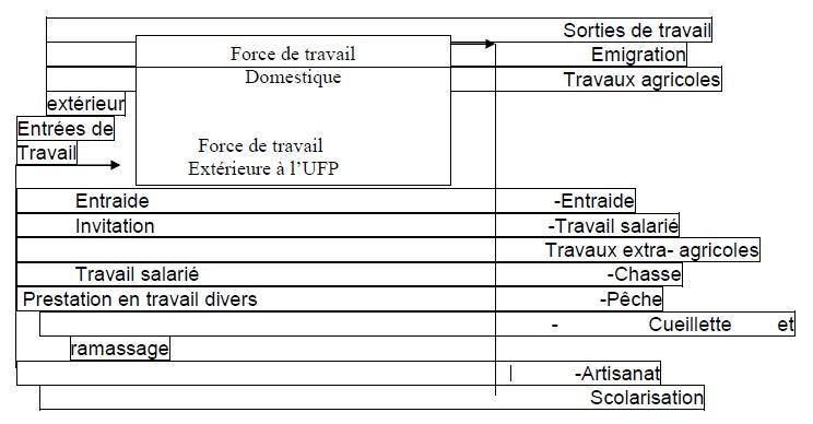 Figure 3 Etude de la contribution des ressources naturelles aux budgets des ménages ruraux  Cas du village BANGA (République Centrafricaine)
