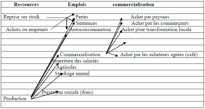 Figure 6 Etude de la contribution des ressources naturelles aux budgets des ménages ruraux  Cas du village BANGA (République Centrafricaine)
