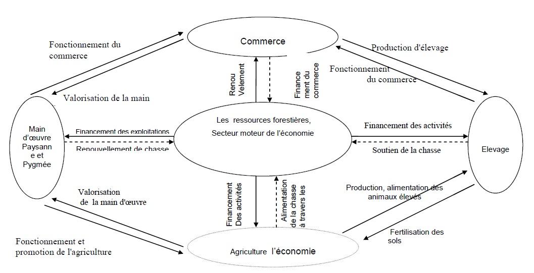 Figure 9 Etude de la contribution des ressources naturelles aux budgets des ménages ruraux  Cas du village BANGA (République Centrafricaine)