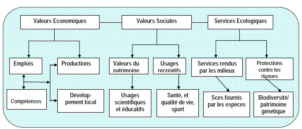 Schéma 2 PROBLEMATIQUE DE LA CREATION DES AIRES PROTEGEES AU CAMEROUN  CAS DU PARCOURS VITA DE DOUALA.