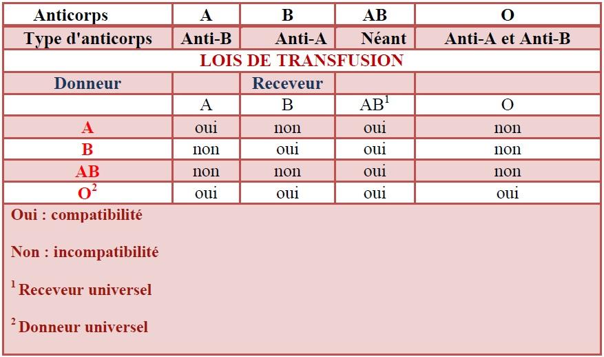 Tableau 11 Analyses médicales aux services du CHU de SBA et à la polyclinique de SIDI Djillali