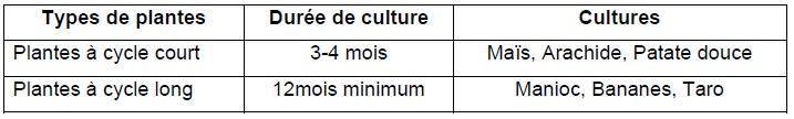 Tableau 8 Etude de la contribution des ressources naturelles aux budgets des ménages ruraux  Cas du village BANGA (République Centrafricaine)