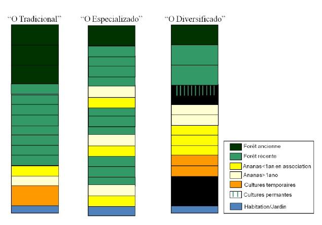 Figure 13 Le développement territorial en Amazonie Brésilienne  Les défis de la mise en oeuvre d'une gouvernance et de stratégies de développement dans le territoire Baixo Amazonas de l'État du Pará