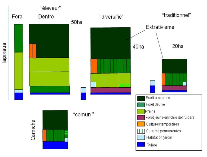 Figure 18 Le développement territorial en Amazonie Brésilienne  Les défis de la mise en oeuvre d'une gouvernance et de stratégies de développement dans le territoire Baixo Amazonas de l'État du Pará