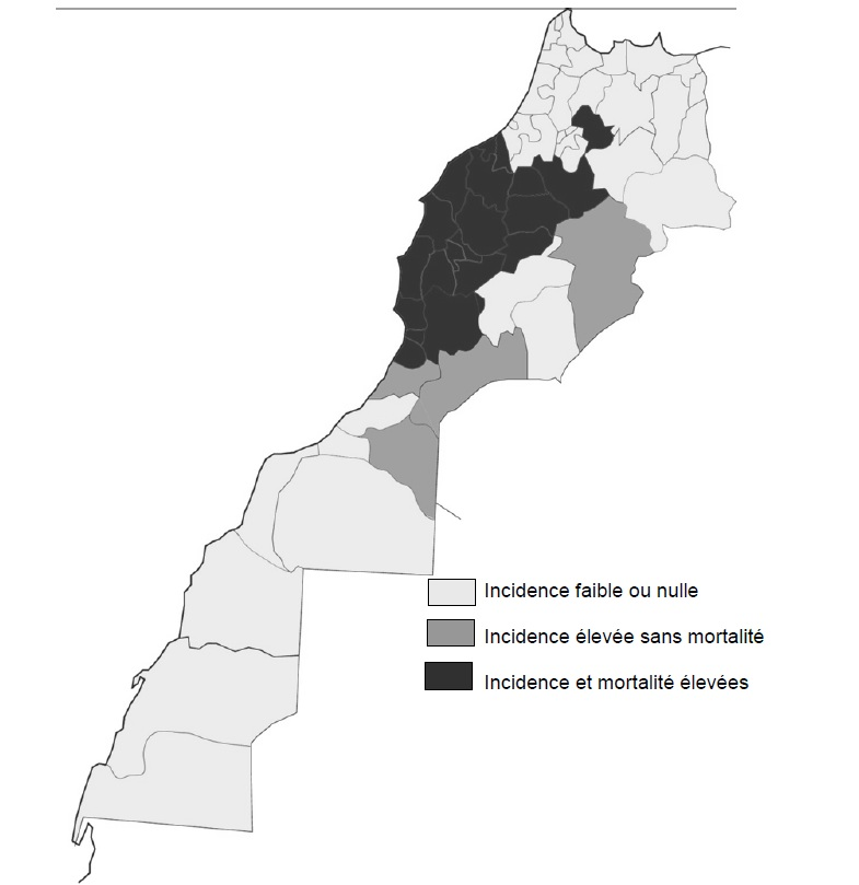 Figure' 7 Scorpionisme, Epidémiologie et Facteurs de Risque au Maroc  cas de la province de Khouribga