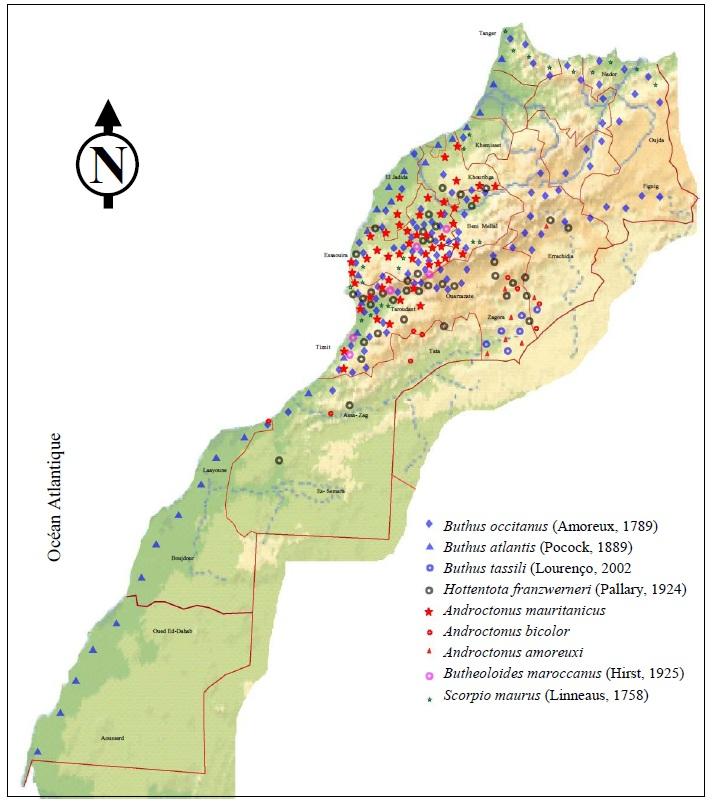 Figure' 8 Scorpionisme, Epidémiologie et Facteurs de Risque au Maroc  cas de la province de Khouribga