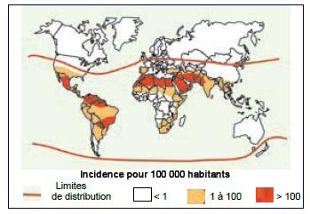 Figure 88 Scorpionisme, Epidémiologie et Facteurs de Risque au Maroc  cas de la province de Khouribga