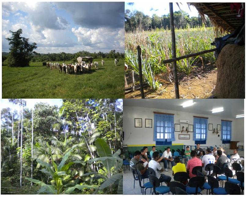 Introduction Le développement territorial en Amazonie Brésilienne  Les défis de la mise en oeuvre d'une gouvernance et de stratégies de développement dans le territoire Baixo Amazonas de l'État du Pará