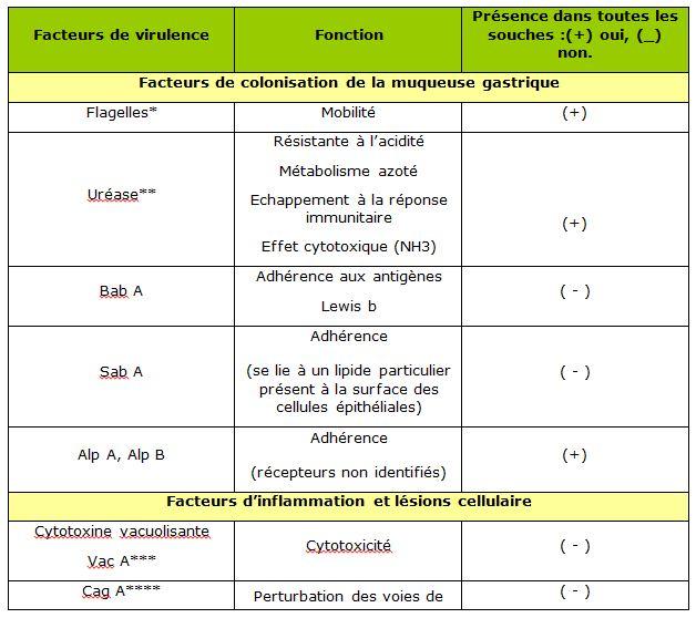 Tableau 1 Helicobacter pylori  Etude bactériologique des premières souches isolées à l'Hôpital Bologhine Ibn Ziri