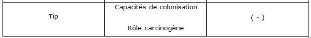 Tableau 1'' Helicobacter pylori  Etude bactériologique des premières souches isolées à l'Hôpital Bologhine Ibn Ziri