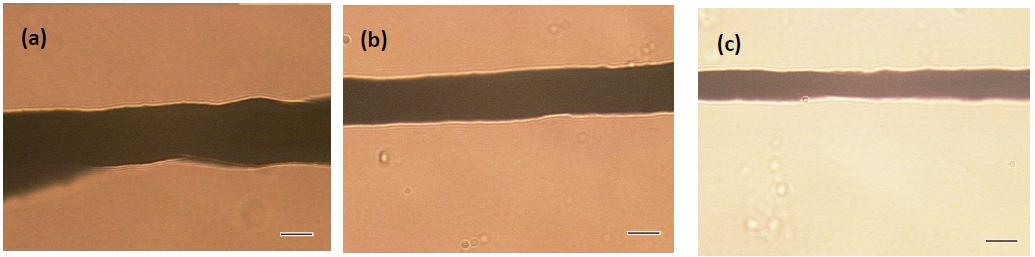 Figure 14 Clichés obtenus par microscopie optique