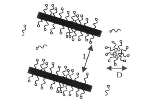 Figure 7 Schéma du comportement des dispersions de nanotubes de carbone avec une concentration en tensioactif nécessaire pour une dispersion totale des nanotubes