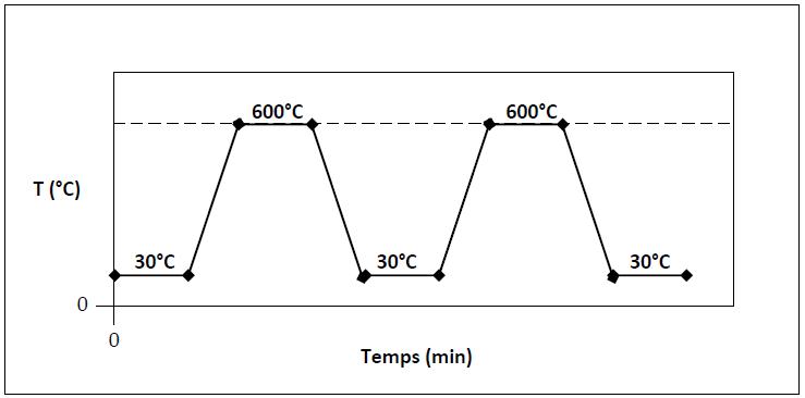 Thermogravimétrique (ATG)