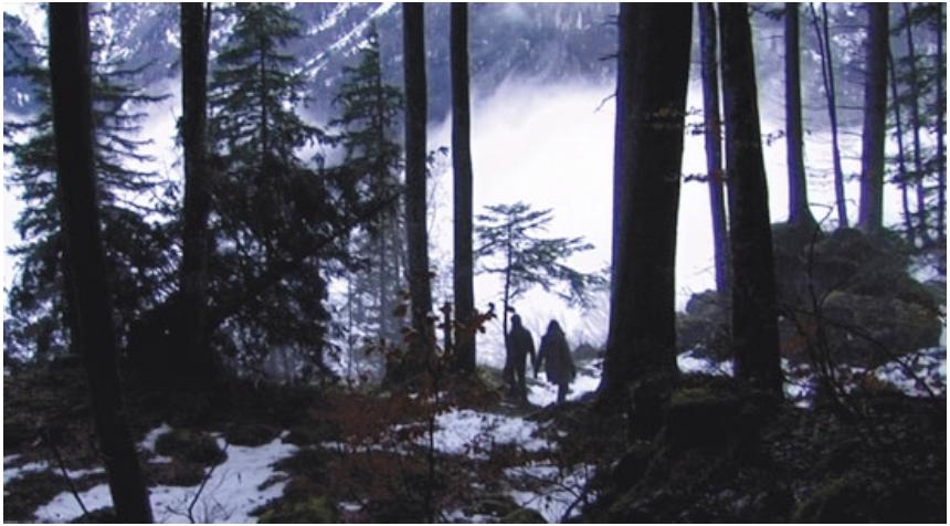« Un lac » de Phillippe Grandrieux (2009)