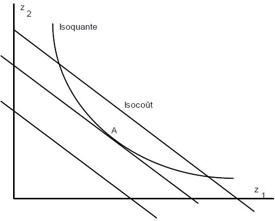 courbe d'isocoût