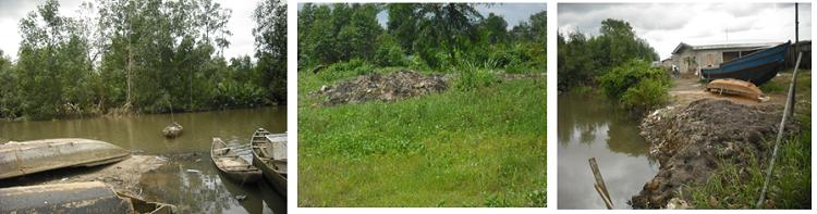 Recherche du bois d'énergie, défrichements, urbanisation à outrance  à Youpwe