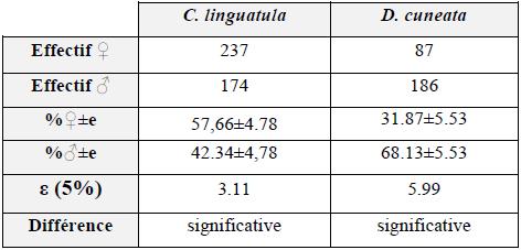 Abondance des mâles et des femelles de C. linguatula et de D. cuneata
