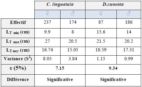 Comparaison des tailles moyennes par sexe des deux espèces étudiées