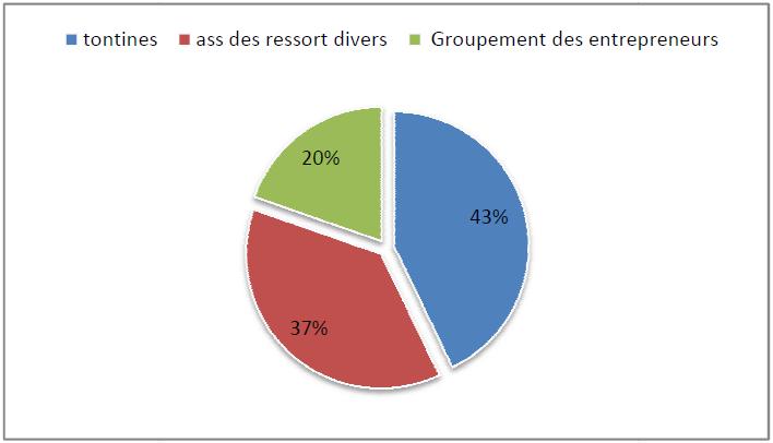 Entreprises et relation avec les institutions formelles et informelles à Douala