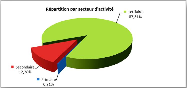Répartition des entreprises de Douala par secteur d'activité