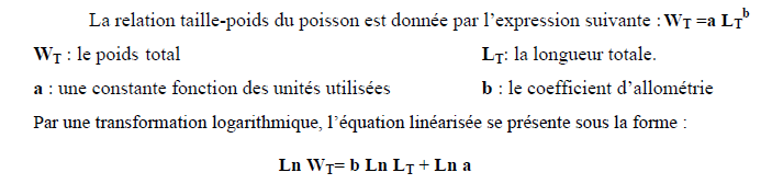 Relation Taille-Poids