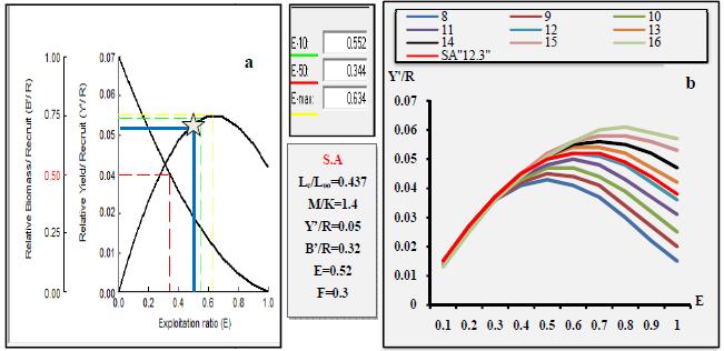 Rendement relatif par recrue en fonction du niveau d'exploitation pour C.linguatula
