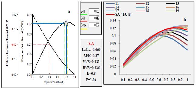 Rendement relatif par recrue en fonction du niveau d'exploitation pour D.cuneata