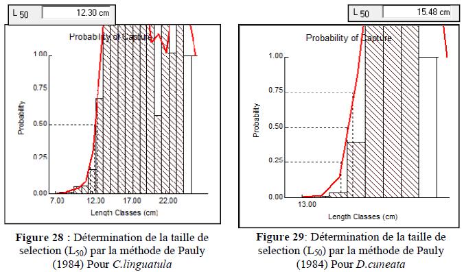 Variations de la probabilité (P)