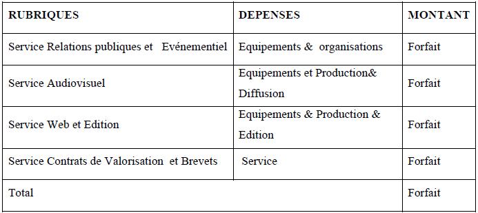 Budget envisagé pour les services conception, production, diffusion