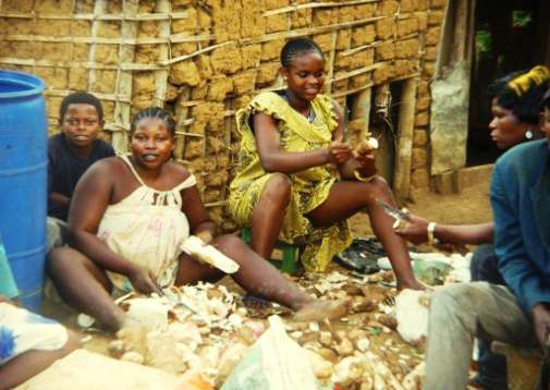 Femmes de l'AFAC en plein travail de transformation du manioc
