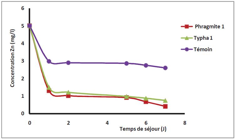 L'effet du temps de séjour sur l'élimination du zinc sur les filtres plantés et sur le témoin