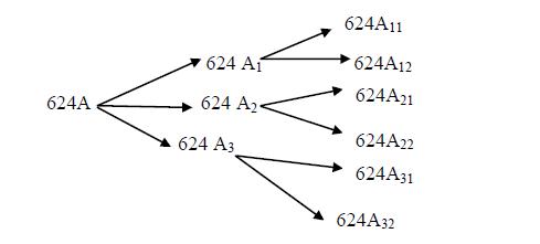 Schéma de la logique de tronçonnage des grumes